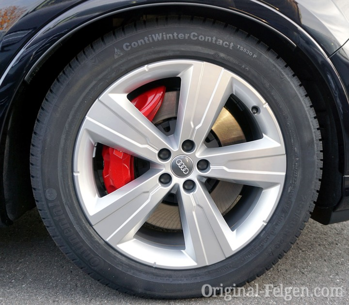 Audi Winter Alufelge 5-Arm-Crena-Design